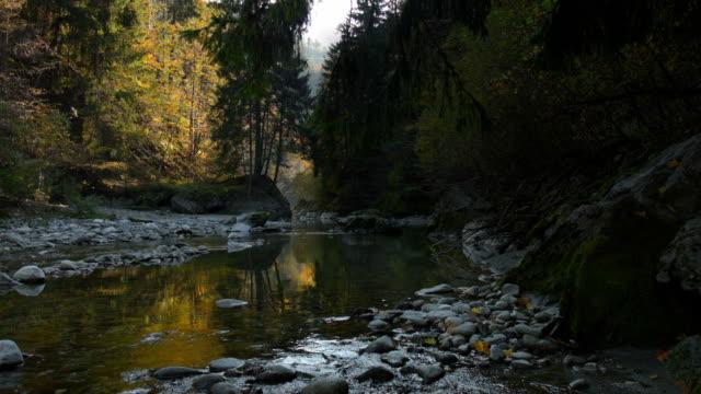 Rivier de Sill in de buurt van Innsbruck, Oostenrijk in herfst