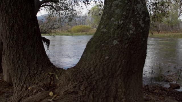 River stream in Dalamtia