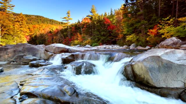 River through fall foliage, Swift River Lower Falls, NH, USA