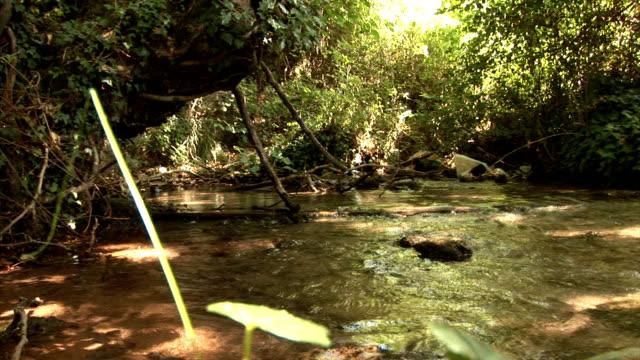 river (HD 25P)