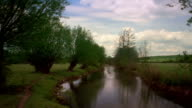 T/L, MS, River Windrush, willow trees swaying in breeze, Oxfordshire, England
