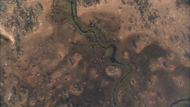 Rivers and waterways cut through the Okavango Delta in Botswana, Africa. Available in HD.