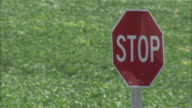 A road sign stands near a field of crops in rural Iowa.