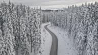 Luchtfoto weg door het bos in de winter