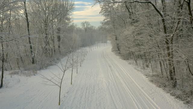 Luchtfoto weg door het winterse bos