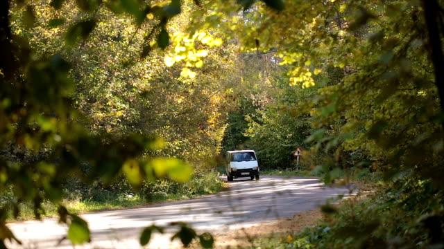 Straßenverkehr in den herbstlichen Wald.