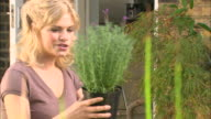 CU roaming across hands, plants, seedlings