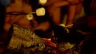 HD: Roasting Marshmallows