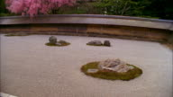 WS HA TU Rock garden and cherry blossoms at Ryoanji Temple, Kyoto, Japan