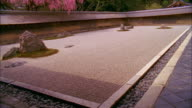 WS TU Rock garden and cherry blossoms at Ryoanji Temple, Kyoto, Japan