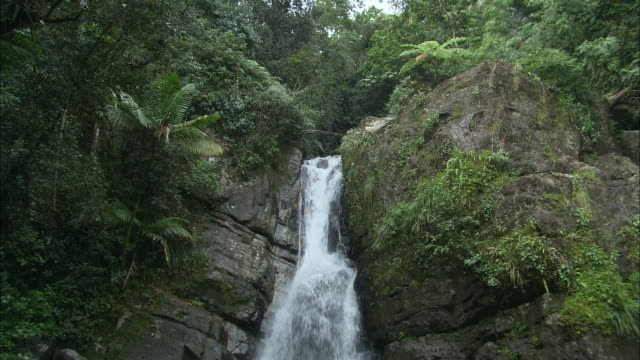 WS Rocky waterfall with lush plants surrounding/ Rio Grande, Puerto Rico