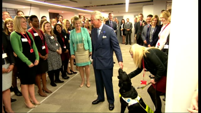 Rod Stewart is late to attend event with Prince Charles More Charles meeting lineup of staff and petting guide dog / Prince Charles seen in camera...