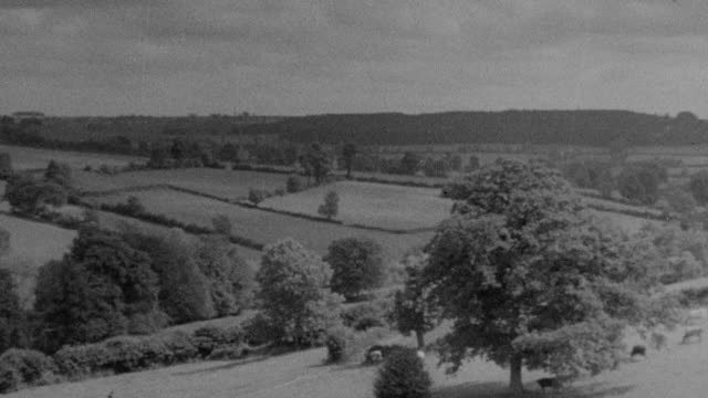 1937 MONTAGE Rolling agriculture countryside / Essex, England