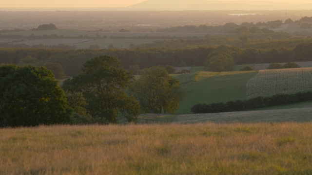 Rolling english countryside at dawn