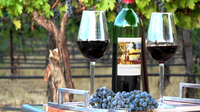 Romantic Picnic Wine Tasting. Two Glasses and a Bottle in a Vineyard Setting