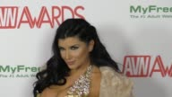 Romi Rain at the 2017 AVN Awards Nomination Party at Avalon Nightclub on November 17 2016 in Hollywood California