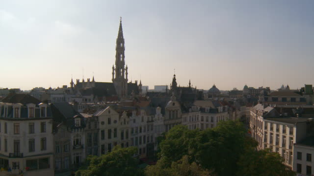 WS T/L Roofs of Brussels and his majestic Town Hall. Frame by frame / Brussels, Brussels Capital Region, Belgium
