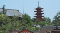 MS Roofs of buildings at Itsukushima Shrine with pagoda in background, Miyajima Island, Japan