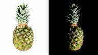 Rotating pineapple