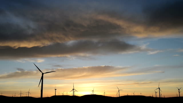 Rotating wind turbine,meadow,sky during sunset,real time.