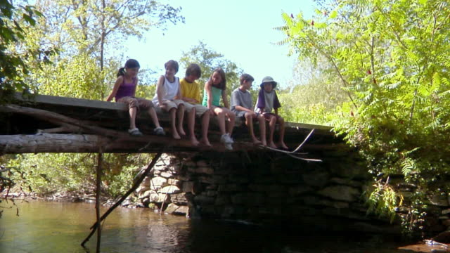 MS, row of children (8-11) sitting on wooden bridge, Bovina, New York State, USA