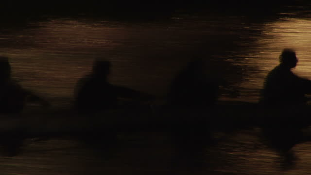 Rowers at dusk in Melbourne, Australia. HD
