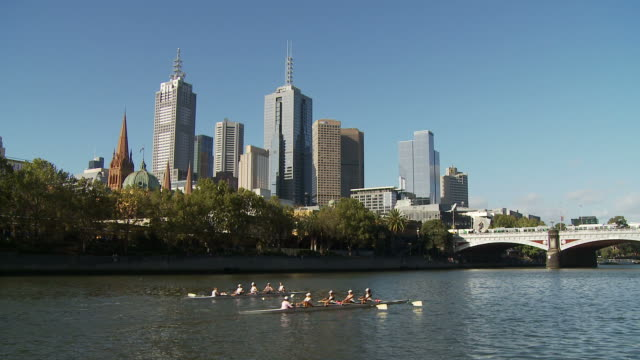 WS Rowing crews on  Yarra River, downtown skyscrapers in background / Melbourne, Australia