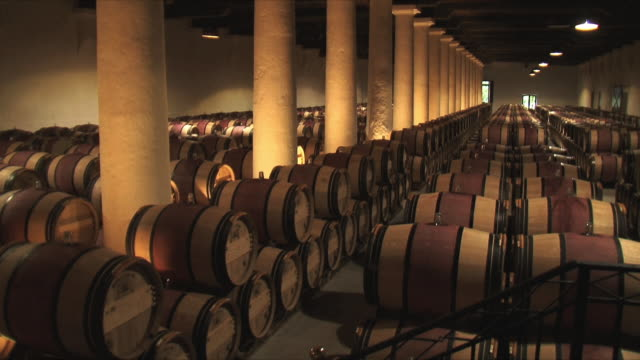 WS PAN Rows of barrels in cellar / Bordeaux, Gironde, France