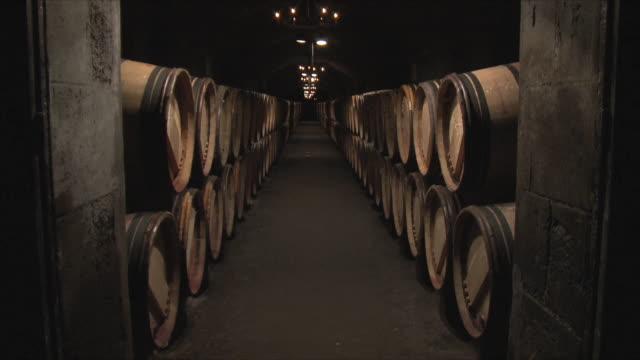 WS Rows of barrels in cellar / Bordeaux, Gironde, France