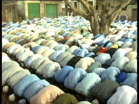 Rows of Muslim men knelt beneath tree bow down in prayer Al Dahria Village Egypt