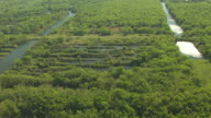 MS AERIAL Rows of strip pits at Strip Pits State Wildlife Management Area / Kansas, United States