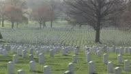 WS, DS, Rows of tombstones, Arlington National Cemetery, Arlington, Virginia, USA