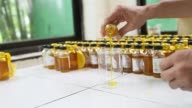 A Ruchi Soya Industries Ltd employee works in a laboratory of the quality assurance department at the at the company's edible oil refinery plant in...