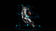 3D Rugby Player with technical data