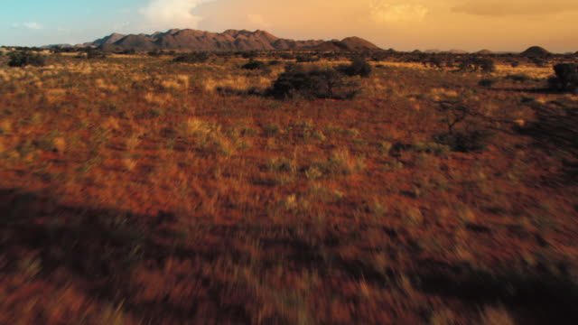 Rugged scrub land stretches toward a distant horizon. Available in HD.