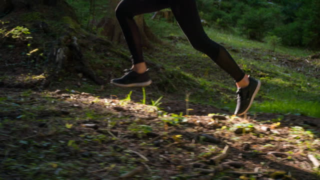 Runner Sport training im Wald