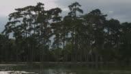 Running beside a lake