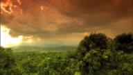 Rural landscape thick vegetation treetops under low cloud cover white hot sky beyond cloud break No people remote
