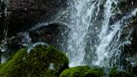 Rushing macro stream mossy lush 1 Columbia River Gorge Oregon Waterfalls 01