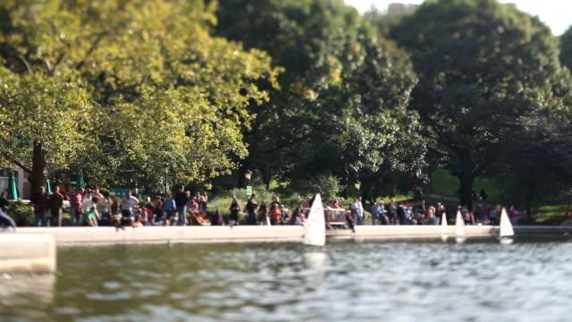 Sailboats in Central Park (Tilt Shift Lens)