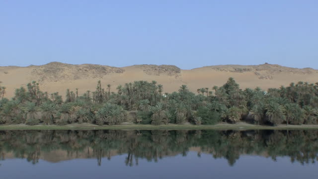 POV Sailing along Nile riverbank lined with African palms and barren desert hills right beyond reflected in Nile's calm waters, Aswan, Egypt