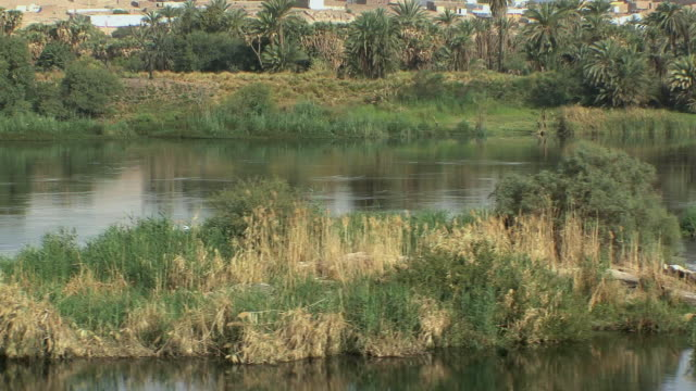 POV Sailing past small sand banks on Nile with egrets perched on bushes, Aswan, Egypt