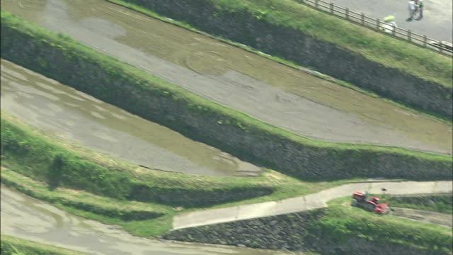 Sakaori rice terrace: Aerial shot