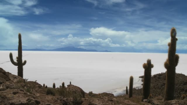 Salar de Uyuni from Incahuasi island Timelapse with moving clouds