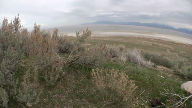 Salt Lake 011 720p24