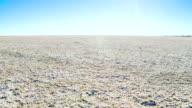 WS DS Salt Pan At Etosha