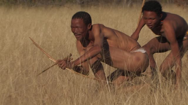 San Bushmen stalk through long grass with their bow and arrow and spear. Available in HD.