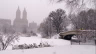 San Remo Overlooking the Lake in Central Park During a Snowstorm