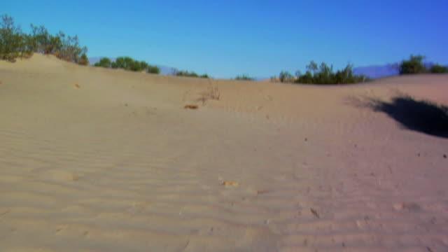 Duna di sabbia a
