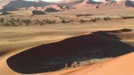 MS ZO WS Sand dunes / Namib Desert, Namibia